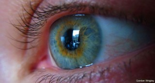 How does your eye transmit data to your brain?